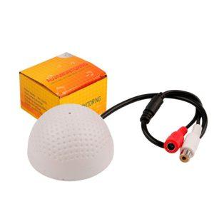 Audio Monitoring Device
